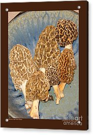 Morels In An Aerni Bowl Acrylic Print by Patricia Overmoyer