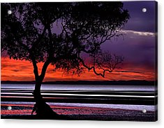 Moreton Bay View Acrylic Print by Robert Charity