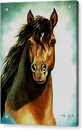 Acrylic Print featuring the painting Morgan Horse by Loxi Sibley
