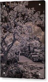 Morikami Gardens - Bridge Acrylic Print
