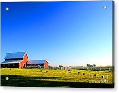 Morning At The Farm Acrylic Print by Steven Reed