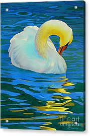 Morning Bath Acrylic Print by Robert Hooper