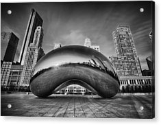 Morning Bean In Black And White Acrylic Print