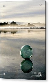 Morning Discovery Acrylic Print
