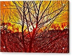 Morning Fire Acrylic Print by Lorri Crossno