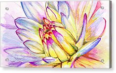 Morning Flower Acrylic Print