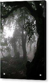 Morning Fog Acrylic Print by Arie Arik Chen