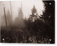Morning Fog In The Smoky Mountains Acrylic Print by Dan Sproul