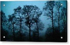 Morning Fog Outside The Night Train Acrylic Print by Aleksander Rotner