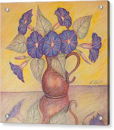 Morning Glories With Yellow Background Acrylic Print by Claudia Cox