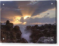 Morning Glory Acrylic Print by Darleen Stry