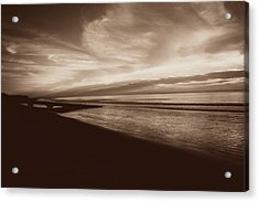 Morning Glory Acrylic Print by Debbie Howden