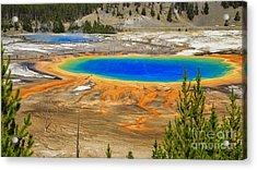 Grand Prismatic Geyser Yellowstone National Park Acrylic Print