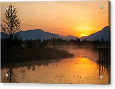 Acrylic Print featuring the photograph Morning Has Broken by Jack Bell