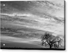 Morning Has Broken Like The First Dawning Landscape Bw Acrylic Print by James BO  Insogna