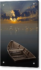 Morning Has Broken Like The First Morning Acrylic Print by Randall Nyhof
