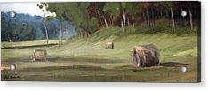 Morning Hay Acrylic Print by Erin Rickelton