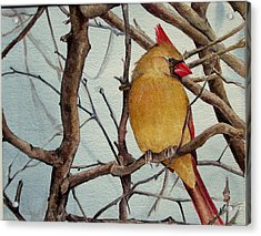 Acrylic Print featuring the painting Morning Herald by Margit Sampogna