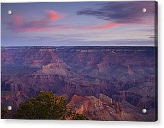 Morning Hike Into The Grand Canyon Acrylic Print by Andrew Soundarajan