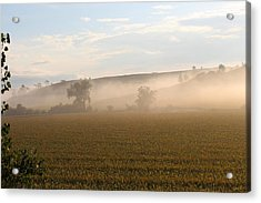 Morning In Iowa Acrylic Print by Angie Phillips