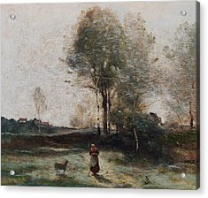 Morning In The Field Acrylic Print by Jean Baptiste Camille Corot