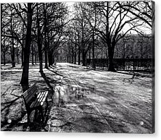Acrylic Print featuring the photograph Morning In The Hofgarten by Ross Henton