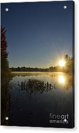 Morning In The North Woods Acrylic Print by Birgit Tyrrell