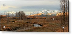 Morning In The Wasatch Back. Acrylic Print