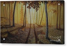 Morning Light Acrylic Print by Andrew Lee