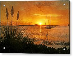 Morning Light - Florida Sunrise Acrylic Print by HH Photography of Florida