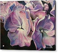 Morning Light Acrylic Print by Joyce Hutchinson