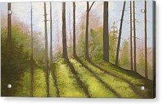 Morning Light On The Ledge Acrylic Print by Bruce Richardson
