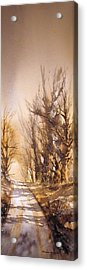 Morning Light Acrylic Print by Roland Byrne