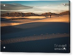 Morning Light Acrylic Print by Sherry Davis