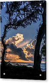 Morning Love Acrylic Print