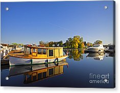 Morning Marina Acrylic Print by Charline Xia