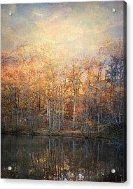 Morning Meditation Acrylic Print by Jai Johnson
