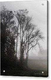 Morning Mist Acrylic Print by Aleksander Rotner