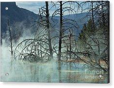 Morning Mist At Mammoth Hot Springs Acrylic Print by Sandra Bronstein