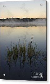 Morning Mist At Sunrise Acrylic Print by David Gordon