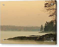 Morning Mist Acrylic Print by Christopher Mace