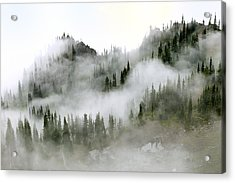 Morning Mist In Olympic National Park Acrylic Print by King Wu