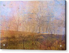 Morning Mist Acrylic Print by Jan Amiss Photography