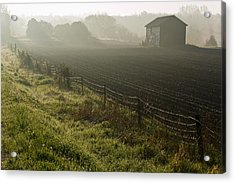 Morning Mist Over Field And Acrylic Print by Jim Craigmyle