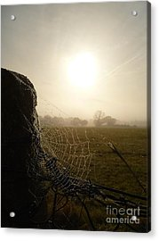 Acrylic Print featuring the photograph Morning Mist by Vicki Spindler
