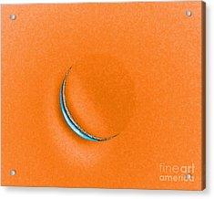 Morning Moon Orange Acrylic Print by Al Powell Photography USA