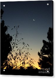 Acrylic Print featuring the photograph Morning Moonshine by Carla Carson