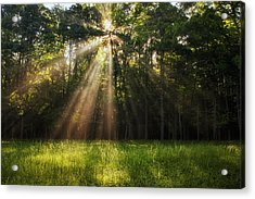 Morning Radiance Acrylic Print by Andrew Soundarajan