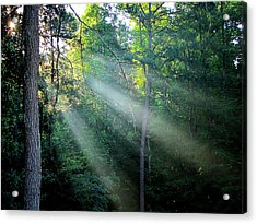 Acrylic Print featuring the photograph Morning Rays by Greg Simmons