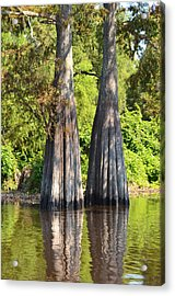 Morning Reflection Acrylic Print by Maggy Marsh